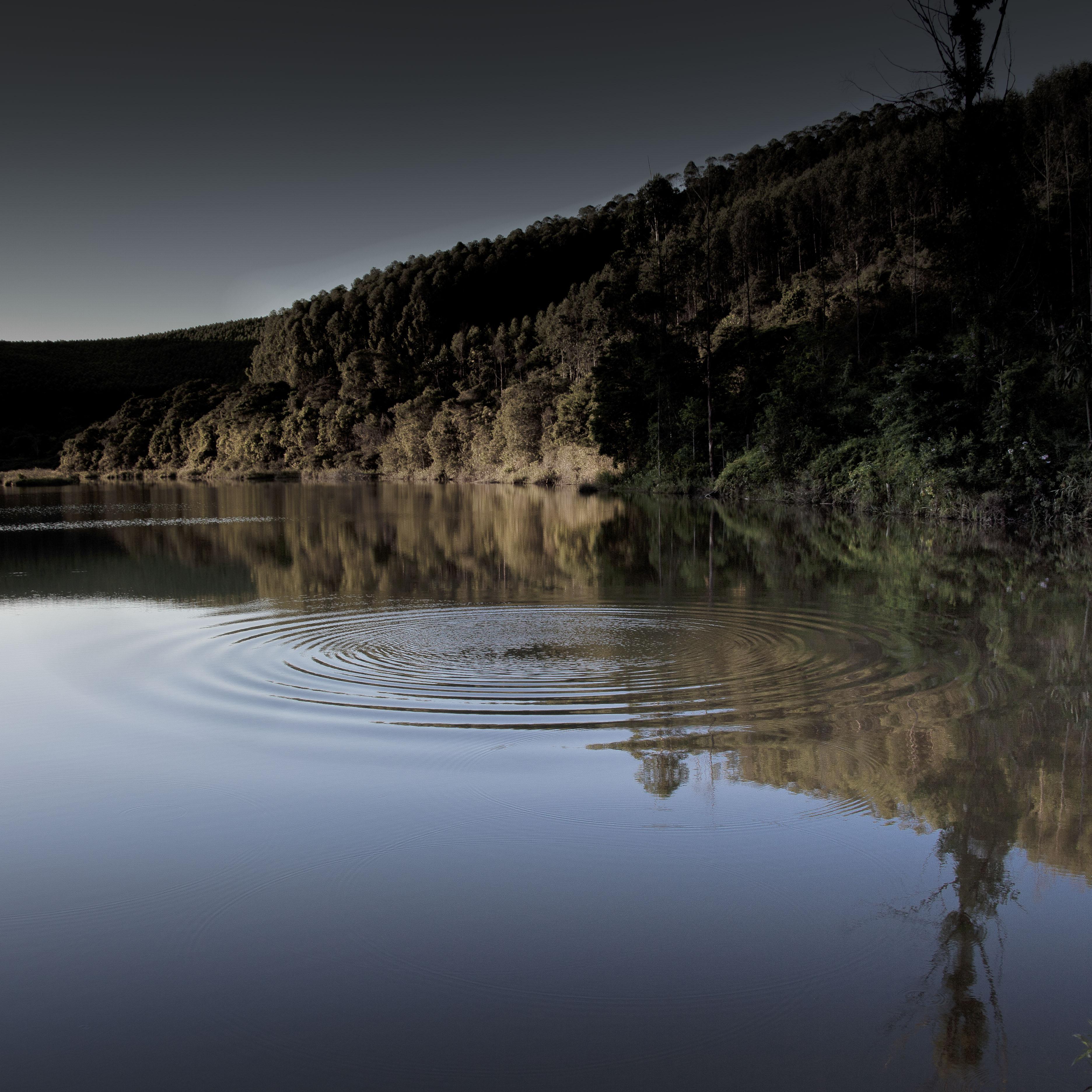 Lagoa_-_Fábio_Cançado